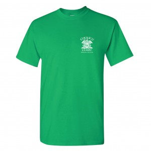 County-Clare-T-shirt-Green-Front